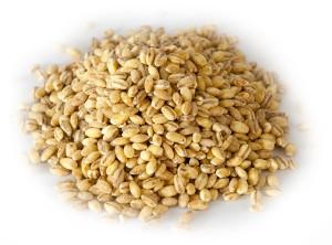 soup-chopped-barley